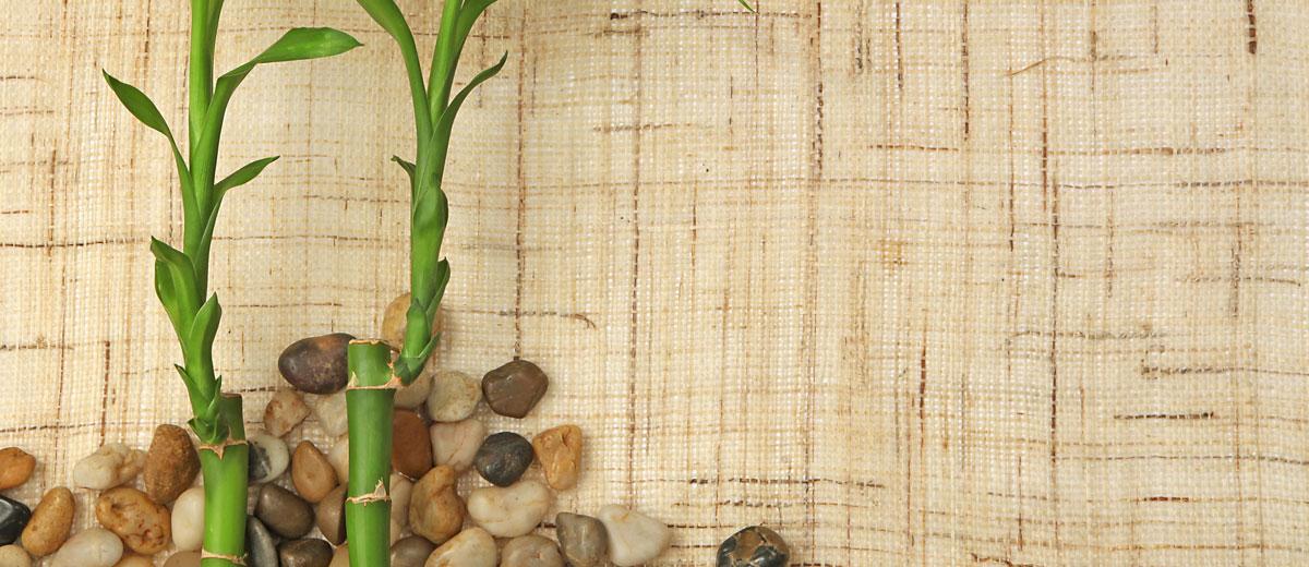 alfombras suelo bambu